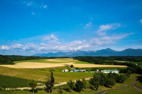 牧歌的な田園風景。