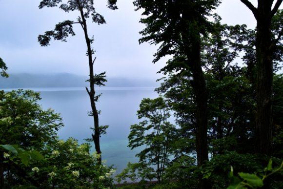 林の間のクッタラ湖。