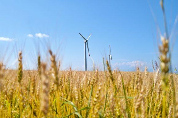 風車が回っています。う~んフォトジェニック!