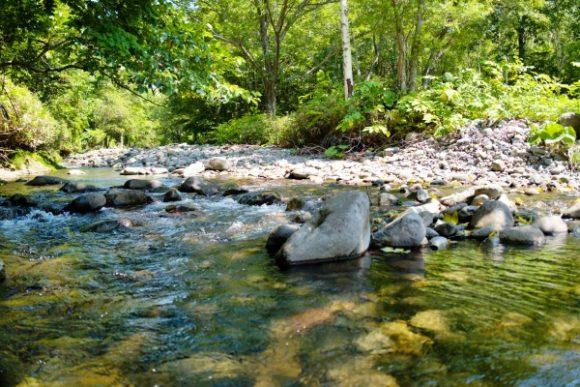 涼しげな渓流・群別川。