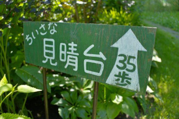 35歩で行ける見晴らし台