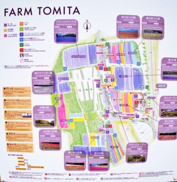 ファーム富田の園内マップ。