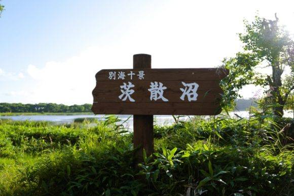 茂みの中に茨散沼の標識。秘境感がハンパない。