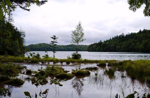 大事に守っていきたい湖です。