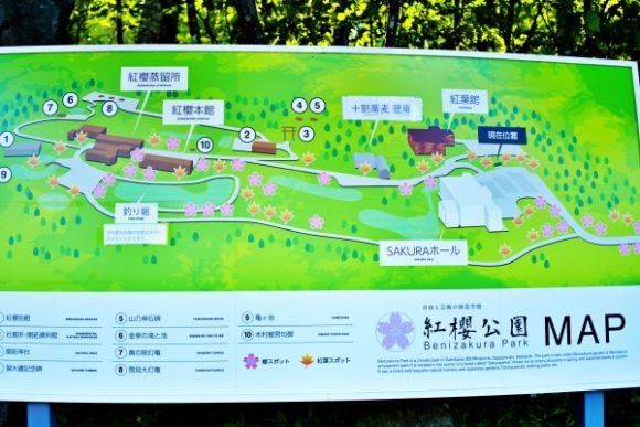 広い紅桜庭園の敷地