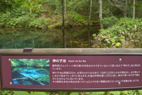 神の子池の説明図