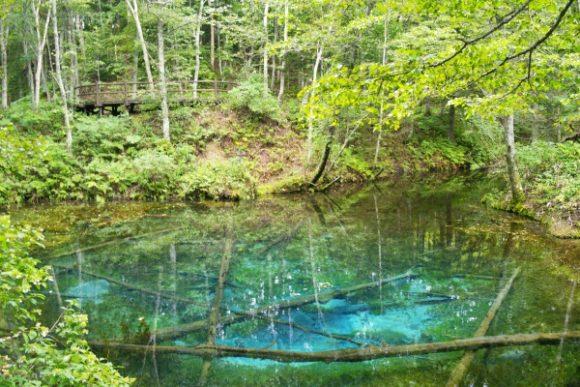 絵画のように美しい神の子池