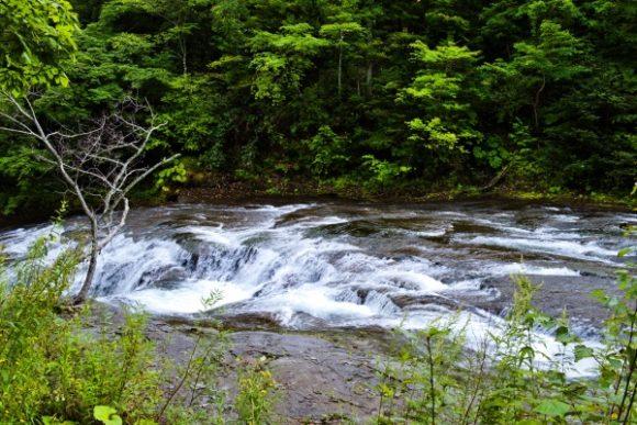 紅葉前なので涼し気な白扇の滝