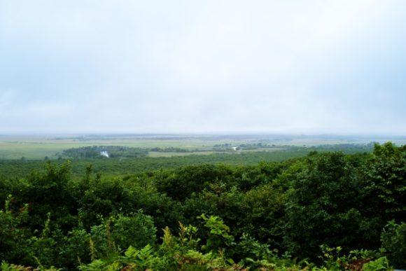 もやもやしている釧路湿原
