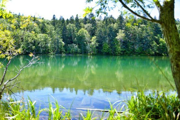穏やかな万計沼で釣りは不釣り合いだ。