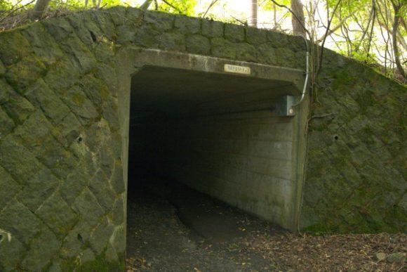 139号線下のトンネルをくぐる。