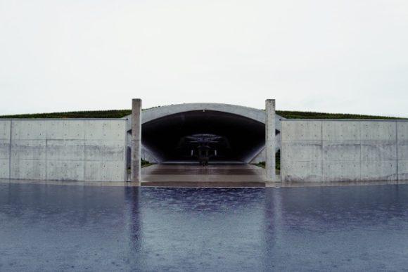 雨で波紋が広がる水庭。