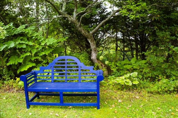 印象的なデザインの青いベンチ。庭に似合っています。