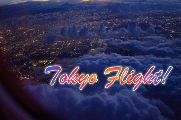 撮影,ライカq,加工,おすすめ,ゴープロ,自作,GOPRO,羽田空港,東京,飛行機写真,夜間,夜空,離陸,ISO感度,絞り値,露出時間,撮り方,ブログ,カメラ,一眼,レンズ,単焦点,空撮,キャノン,映り込み,リフレクション