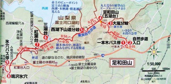 一本木~足和田山~三湖台~紅葉台~鳴沢氷穴。歩行距離7.6キロ。