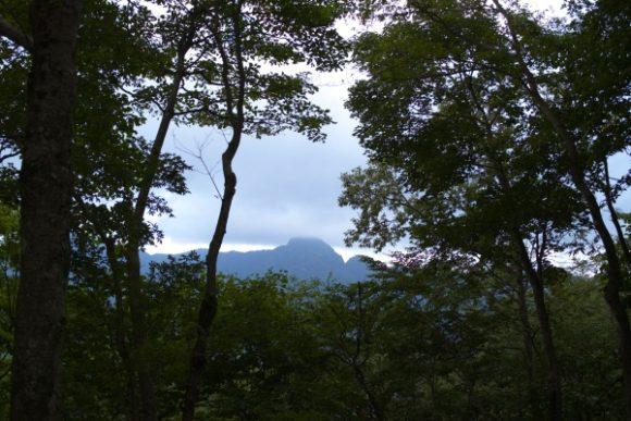 毛無山にも上りたかったが、ちょうどいい時間帯のバスがなかった。中級向きの山です。