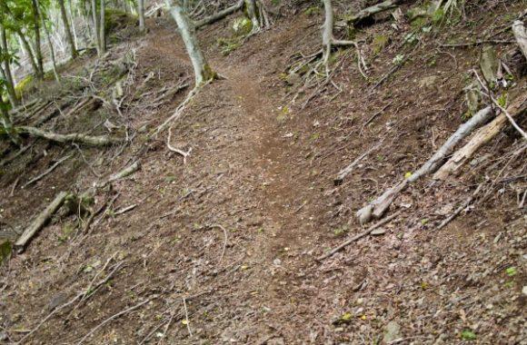 うっすらと細い道を登る。