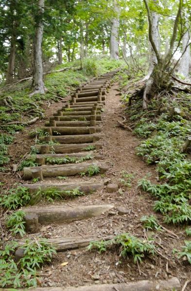この階段を上れば楽になるはず!