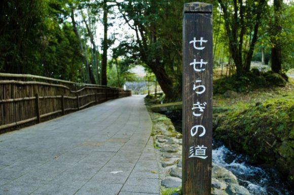 小川沿いを歩けます。デートにおすすめ。