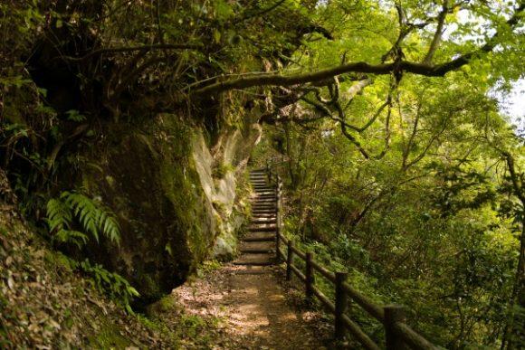 帰りは長い階段を上ることになる。