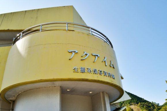 黄色い建物がアクアイムだ。