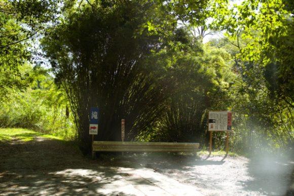 駐車場に車を停めて長野滝へ