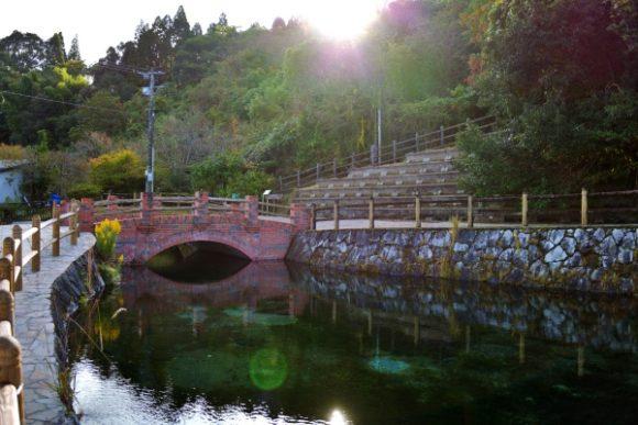 朝の優しい光が丸池湧水公園に降り注ぐ。