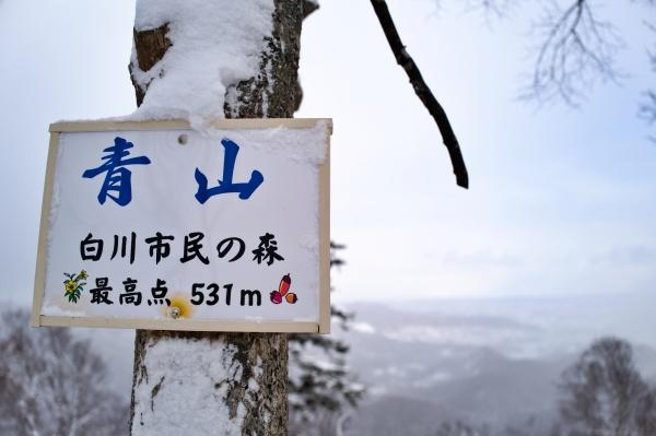 老若男女に愛されそうな山です。