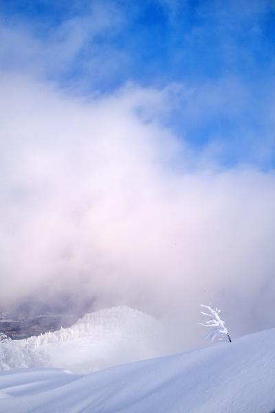 雲の中にいるようだ。山頂は近い。