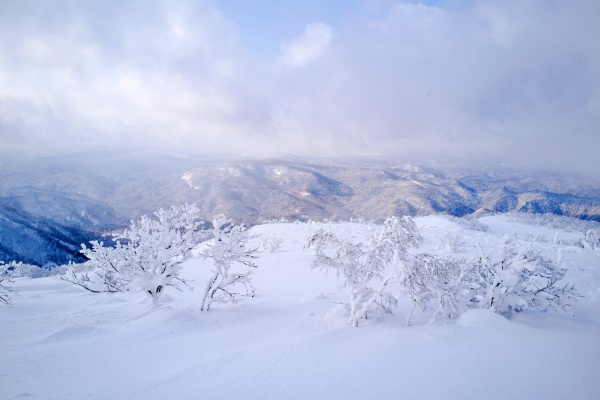 札幌岳山頂から見える景色。