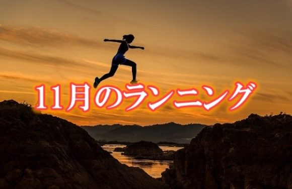 プロテイン,おすすめ,方法,練習,疲労,シューズ,故障,目安,資産運用,ガーミン,100キロ,月間走行距離,ランニング,投資,3.5,サブエガ,3.5,SBI,マラソン,ブログ,レビュー,サブスリー (3)