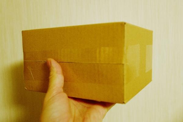 片手サイズの箱で届いた。