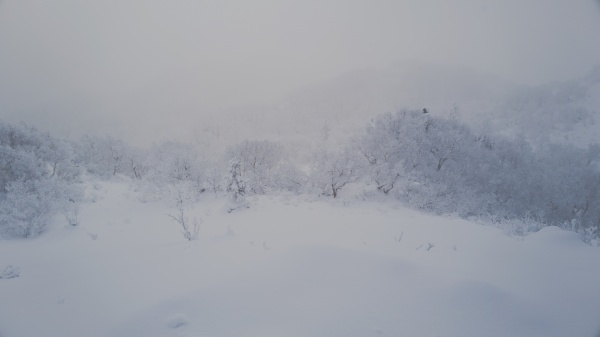 支笏湖は見えないが、真っ白な景色に満足。