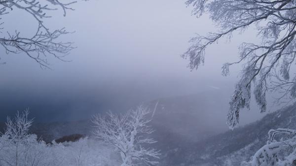樹氷越しの支笏湖。幻想的だ。