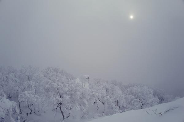 あまりの美しい景色に冬山にハマりそう。