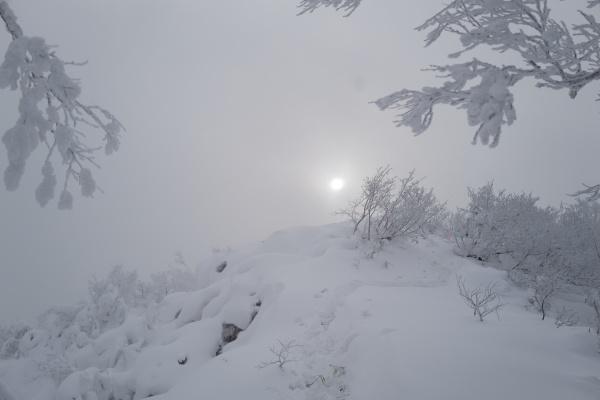 フカフカの雪山の山頂。