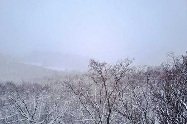 消失する札幌の街並み。(つд⊂)エーン