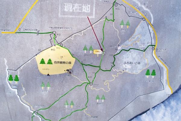 白旗山山頂から札幌台を目指す