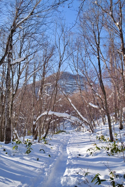 豊平山の山頂を見ながら進む。