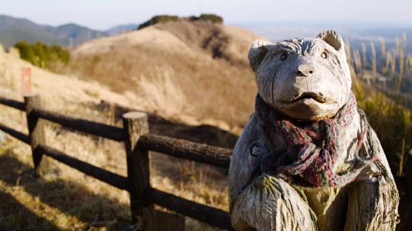 木彫りのクマ(大野さん?)もいました。