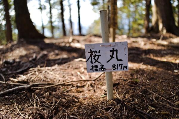 地味な登山標識・桜丸