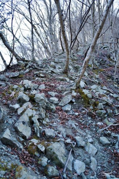 岩場で急な日影山。暗いので心細い。