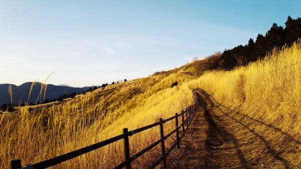 絵葉書にしたくなる大野山の夕景