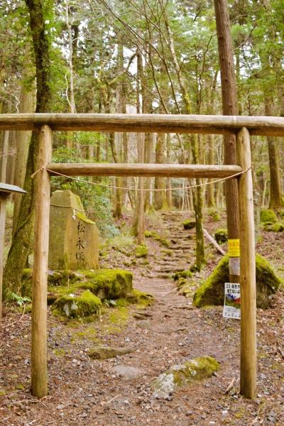 山神社の鳥居をくぐって登山開始!