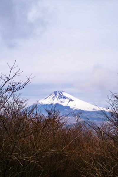 よく富士山が見えます!