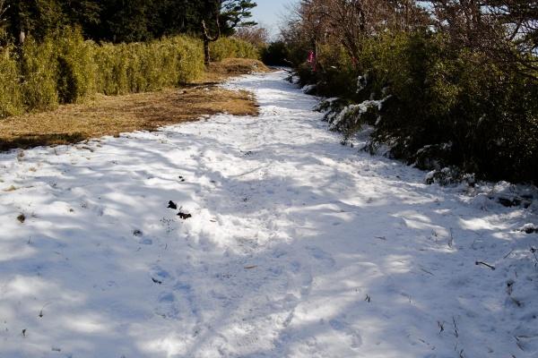 雪の量が多いです。
