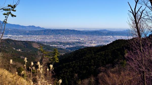 東京方面まで見渡せる。手前は小田原市。