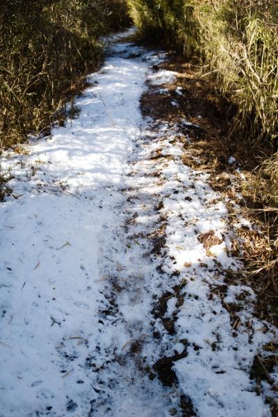 僅かな雪道を歩く。
