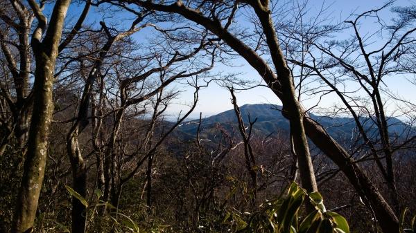 明神ヶ岳~金時山の稜線。はるばる歩いてきたものだ・・・