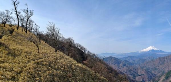 山の稜線と富士山に癒されます。